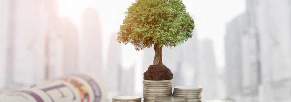 مبادرة مستقبل الاستثمار