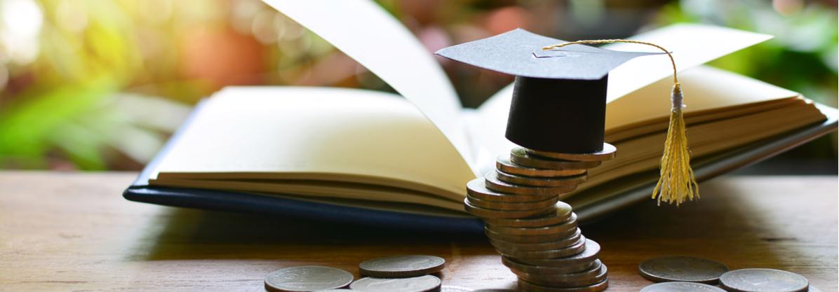 الاستثمار في مجال التعليم