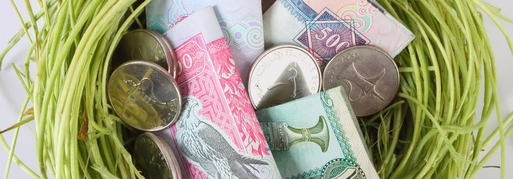 A nest of UAE dirhams savings