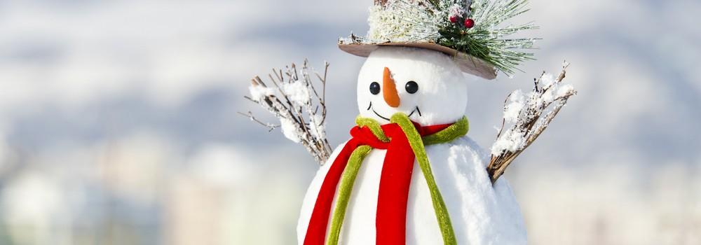 snowman in winter scenes