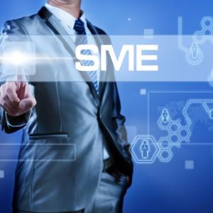 Business man presses SME button