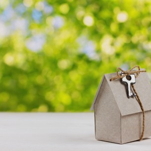 model of cardboard house