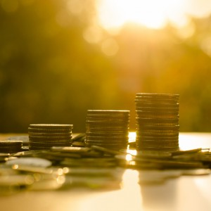 Growing money coins stack with sunset