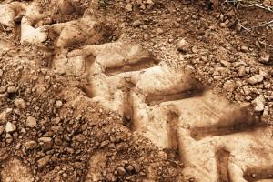 Wheel tracks on dirt