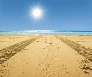 tracks on sand leading into the sea