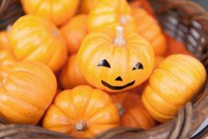 Decoration pumpkin of Halloween