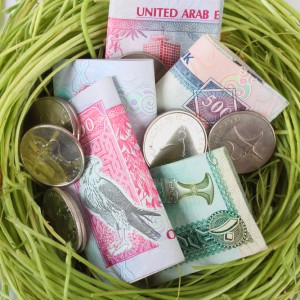 UAE currency dirhams in a nest