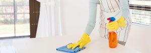 home insurance domestic help