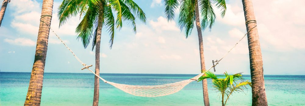 beautiful-beach-hammock-between-two-palm-trees-travel-rendered