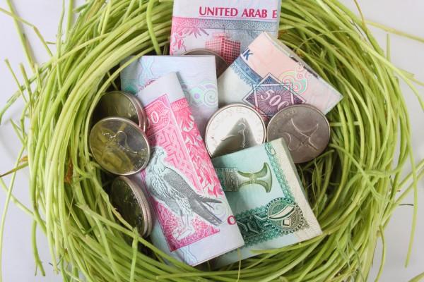 نقود في عش
